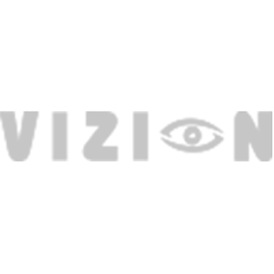 Logo Vizion Reading